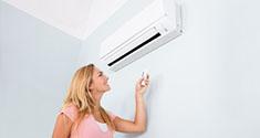 Electric Heat Pumps 3 (Multiple Features)